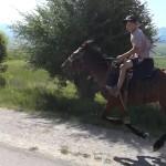 boy.riding.horse